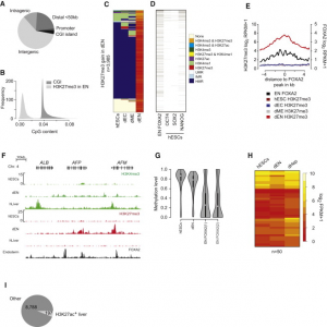 Transcriptional and epigenetic dynamics during specification of human embryonic stem cells.