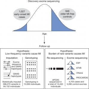 Exome sequencing identifies rare LDLR and APOA5 alleles conferring risk for myocardial infarction
