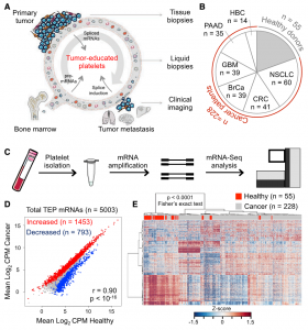 RNA-Seq of Tumor-Educated Platelets Enables Blood-Based Pan-Cancer, Multiclass, and Molecular Pathway Cancer Diagnostics
